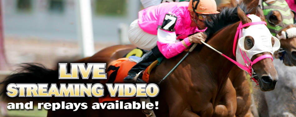 Live Video and Video Replays